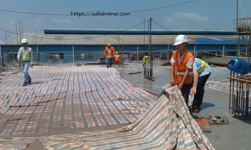 Thời gian bảo dưỡng bê tông sàn