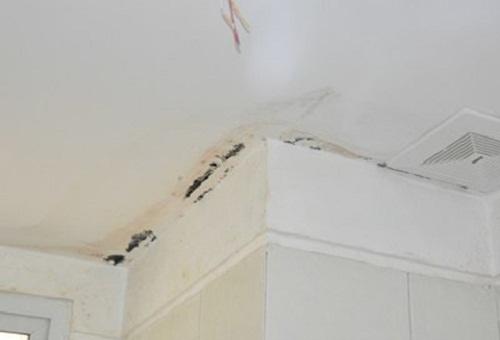 nứt trần nhà